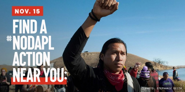 nodapl_action_nov_15